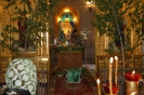 Праздник пресвятой троицы в 2013 году _10