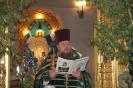 Праздник пресвятой троицы в 2013 году _11