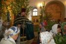 Праздник пресвятой троицы в 2013 году _13