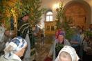 Праздник пресвятой троицы в 2013 году _14