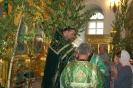 Праздник пресвятой троицы в 2013 году _5