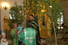 Праздник пресвятой троицы в 2013 году _7