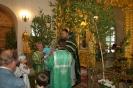 Праздник пресвятой троицы в 2013 году _8