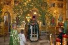 Праздник пресвятой троицы в 2013 году _9